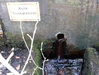 Brunnen Wald