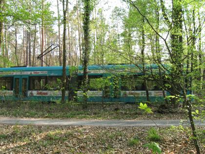 GeoCaching Tour - Strassenbahn im Wald