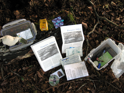 Cachedose mit Schaf Travel Bug