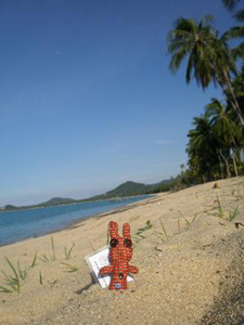 Travel Bug - Henry - Strand Koh Samui - GeoCaching
